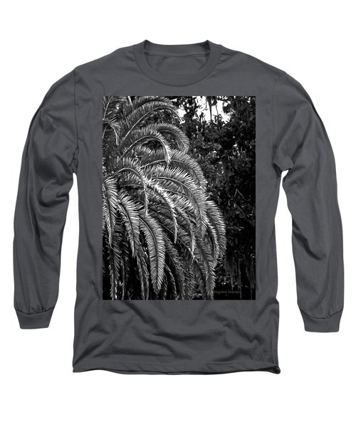 Long Sleeve T-Shirt featuring the photograph Zebra Palm by DigiArt Diaries by Vicky B Fuller