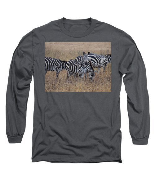 Zebras Walking In The Grass 2 Long Sleeve T-Shirt by Exploramum Exploramum