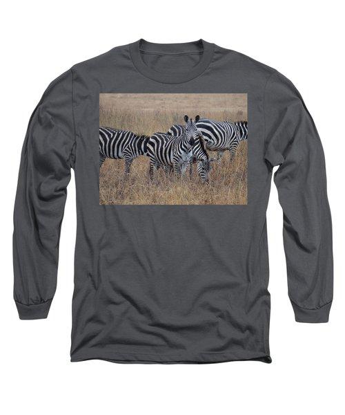 Zebras Walking In The Grass 2 Long Sleeve T-Shirt