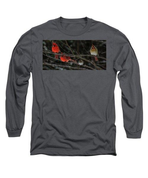 3cardinals And A Sparrow Long Sleeve T-Shirt