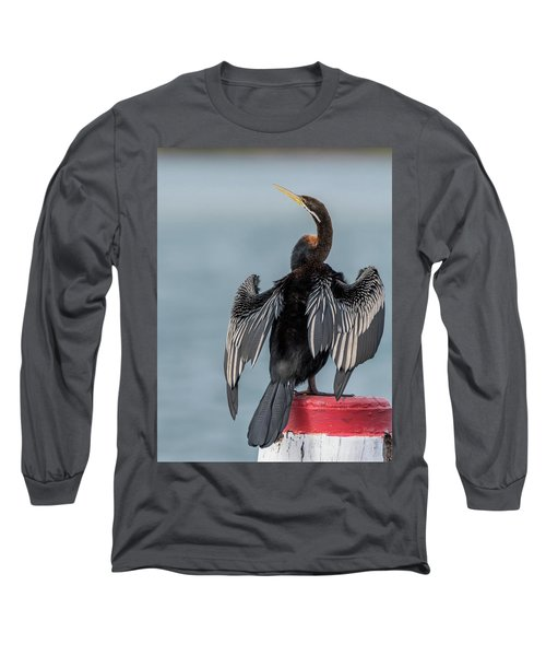 Australasian Darter Long Sleeve T-Shirt