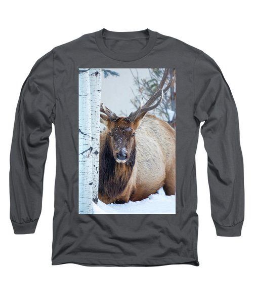 4 Wire Winter  Long Sleeve T-Shirt