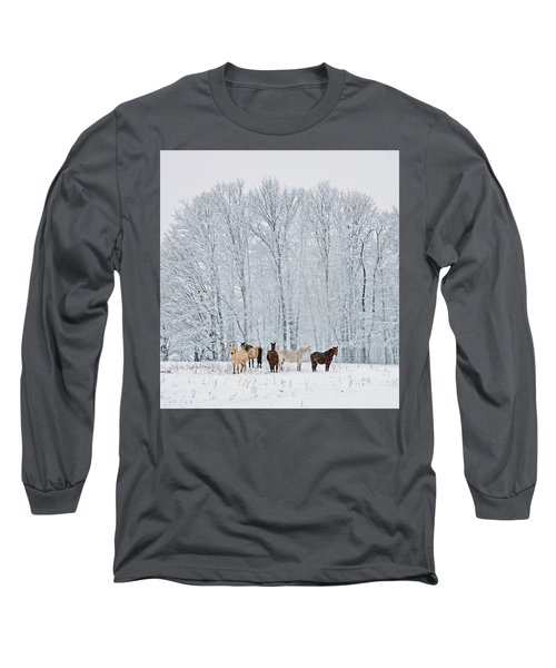 Add A Touch Of Horses To The Winter Magic Long Sleeve T-Shirt