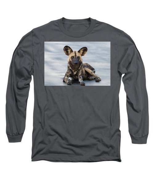 African Wild Dog Resting On A Road Long Sleeve T-Shirt
