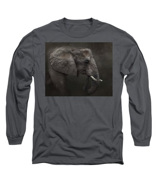 Ancient Wisdom Long Sleeve T-Shirt