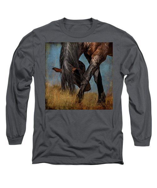 Angles Of The Horse Long Sleeve T-Shirt