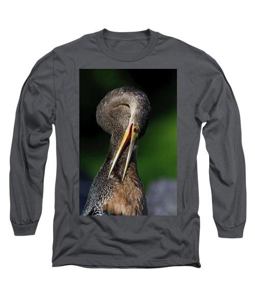 Anhinga Combing Feathers Long Sleeve T-Shirt