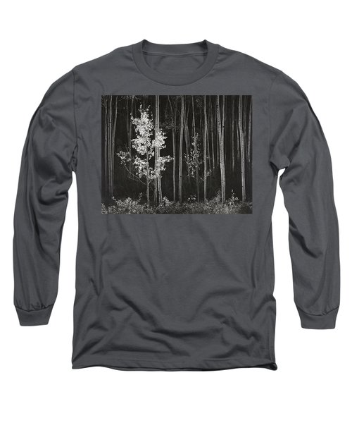 Aspens Northern New Mexico Long Sleeve T-Shirt