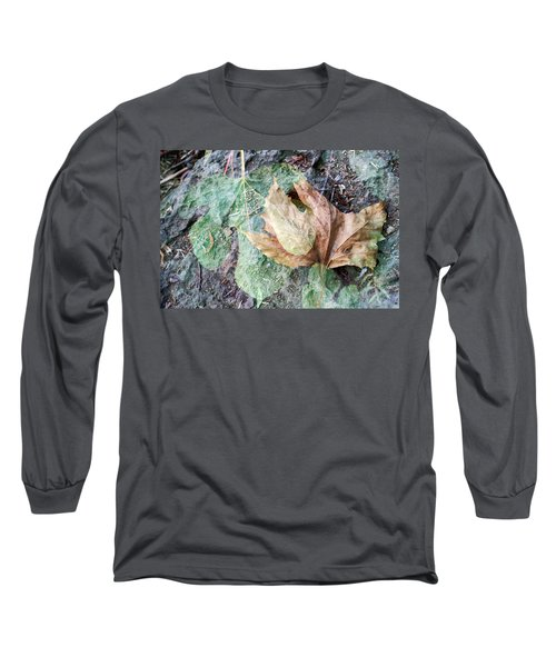 Long Sleeve T-Shirt featuring the photograph Autumn Leaves by Dubi Roman
