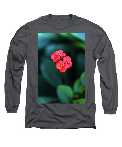 Beautiful Summer Flowers Long Sleeve T-Shirt