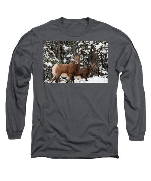 Bighorn Sheep In Deep Snow Long Sleeve T-Shirt