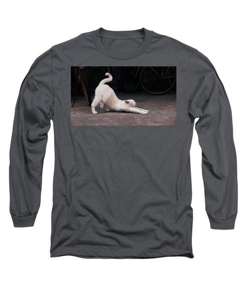 Blue 2 Long Sleeve T-Shirt