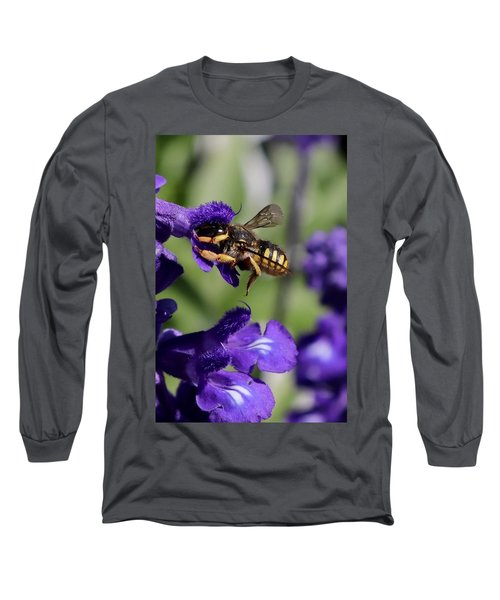 Carder Bee On Salvia Long Sleeve T-Shirt