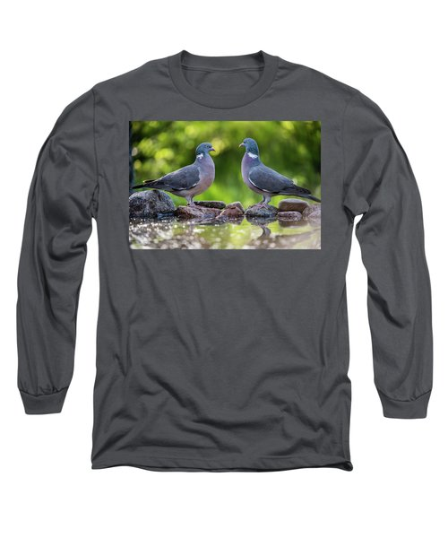Common Wood Pigeons Meeting At The Waterhole Long Sleeve T-Shirt