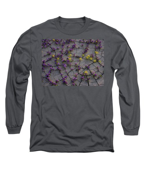Cracked Blossoms II Long Sleeve T-Shirt