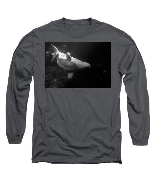 Curious Beluga Long Sleeve T-Shirt
