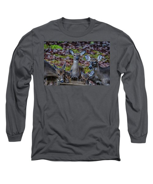 Deer Gathering Long Sleeve T-Shirt