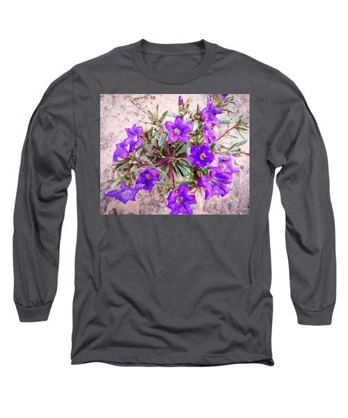Desert Dew Long Sleeve T-Shirt