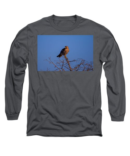 Evening Look Out Long Sleeve T-Shirt