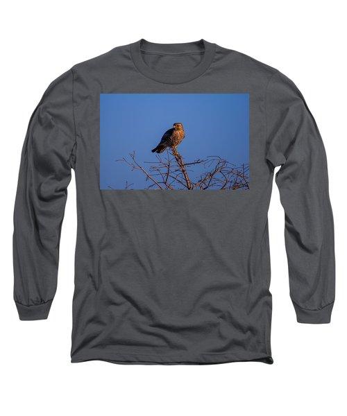 Evening Look Out Long Sleeve T-Shirt