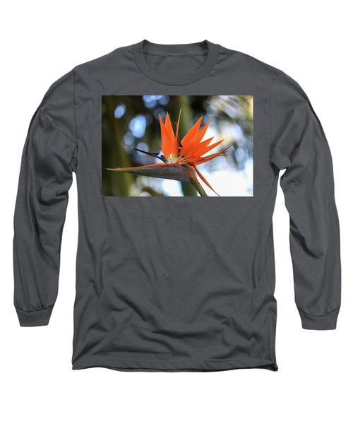 Flight To Paradise Long Sleeve T-Shirt