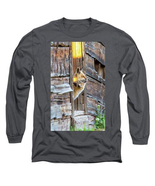 Fox Test  Long Sleeve T-Shirt