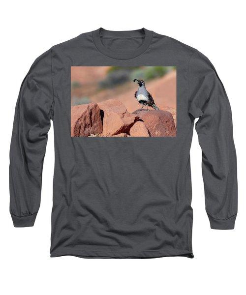 Gambels Quail One Long Sleeve T-Shirt