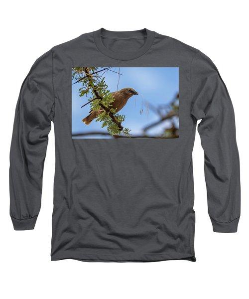 Gray-headed Social Weaver Long Sleeve T-Shirt