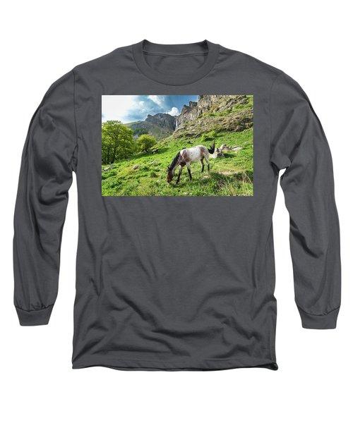 Horse On Balkan Mountain Long Sleeve T-Shirt