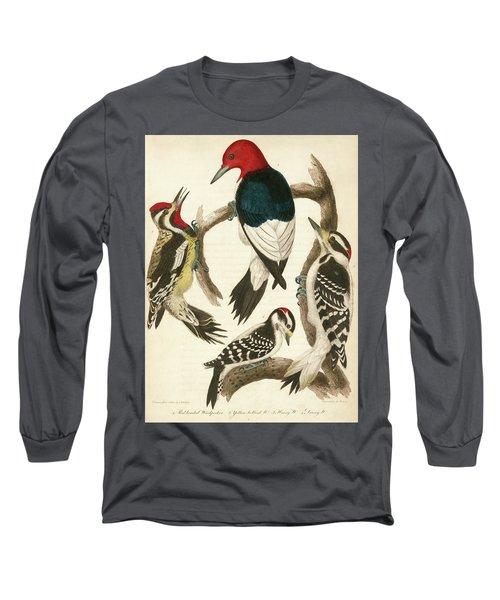 1. Red-headed Woodpecker. 2. Yellow-bellied Woodpecker. 3. Hairy Woodpecker. 4. Downy Woodpecker. Long Sleeve T-Shirt