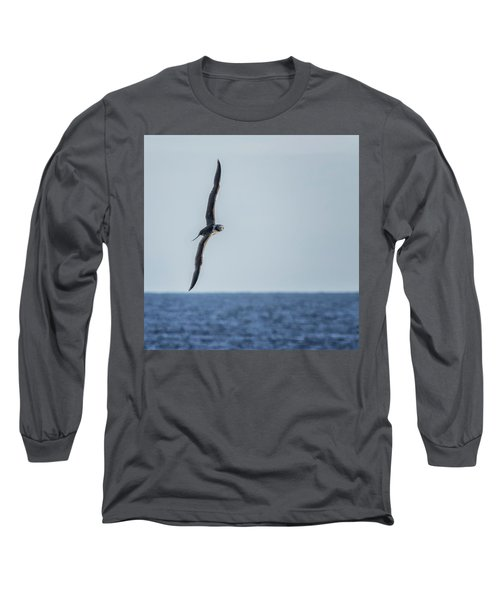 Immature Masked Booby, No. 5 Sq Long Sleeve T-Shirt