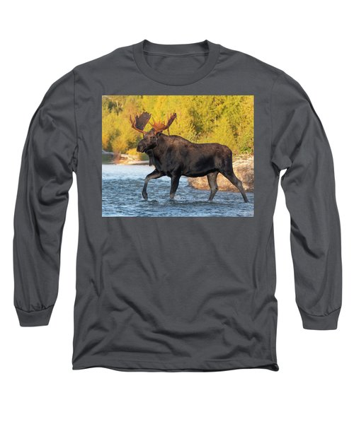 In His Stride Long Sleeve T-Shirt