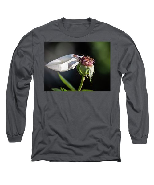 Letting Go Long Sleeve T-Shirt
