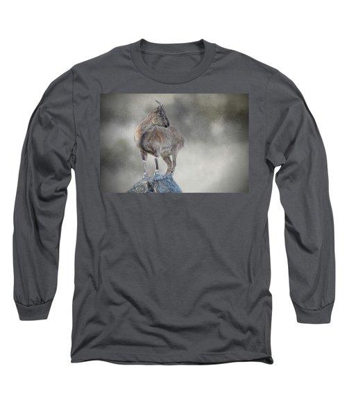 Little Rock Climber Long Sleeve T-Shirt