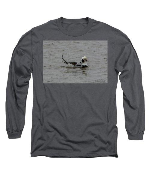 Long Tailed Duck Long Sleeve T-Shirt