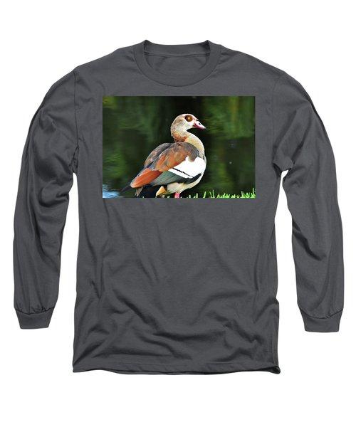 Male Egyptian Goose Long Sleeve T-Shirt