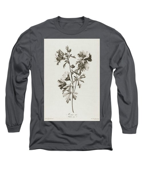 Malva Alcea, 1801 Long Sleeve T-Shirt