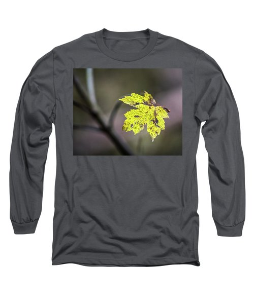 Long Sleeve T-Shirt featuring the photograph Maple Bright by Michael Arend