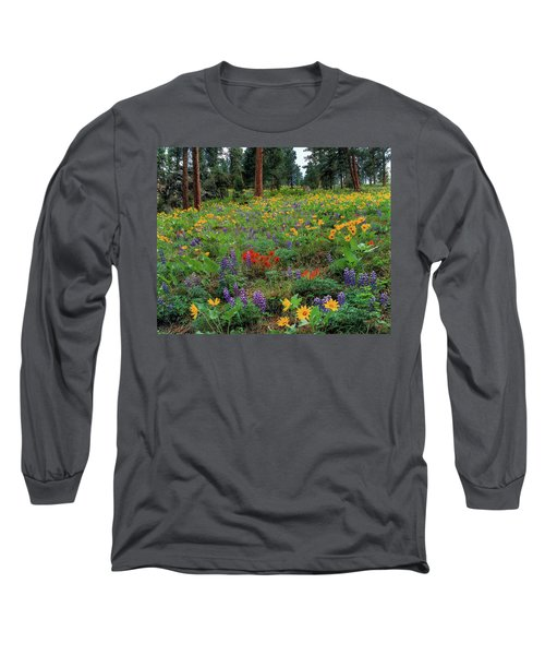 Mountain Wildflowers Long Sleeve T-Shirt