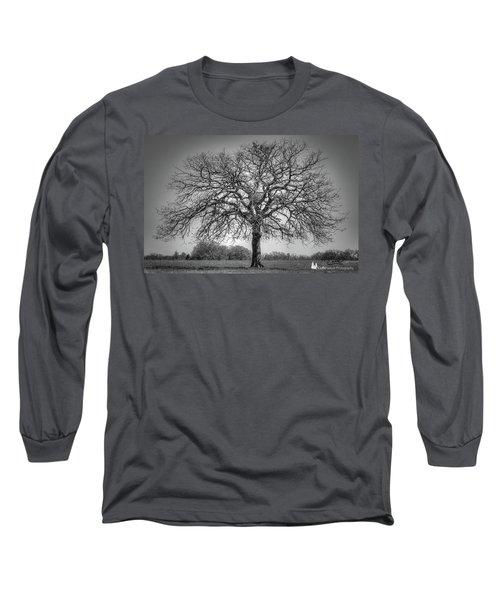 Old Oak Long Sleeve T-Shirt