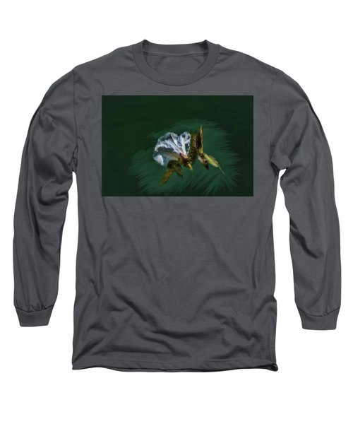 Painted Bindweed #i2 Long Sleeve T-Shirt