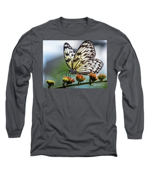 Papillon Long Sleeve T-Shirt