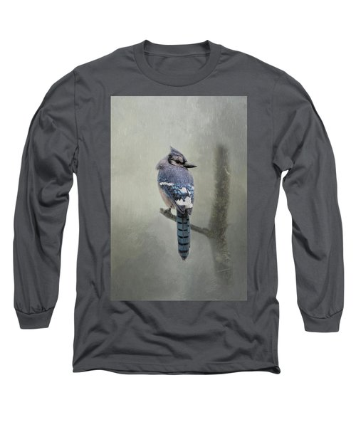 Rainy Day Blue Jay Long Sleeve T-Shirt