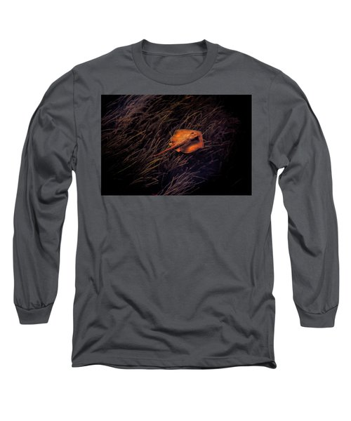 Ray In The Grass Flats Long Sleeve T-Shirt