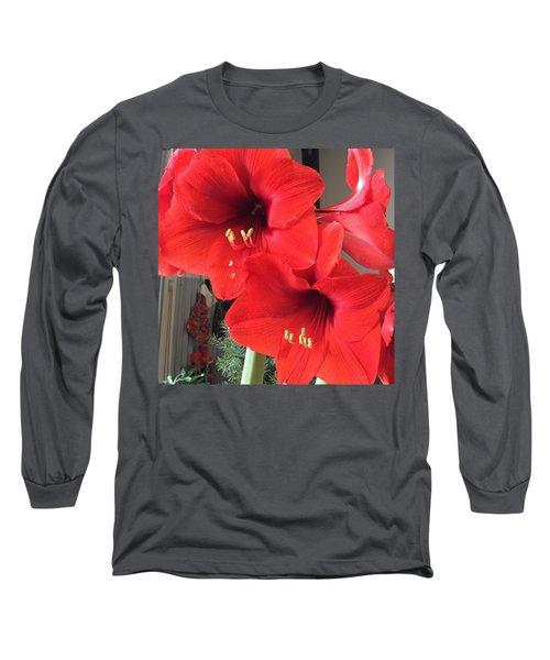 Red Amaryllis Long Sleeve T-Shirt