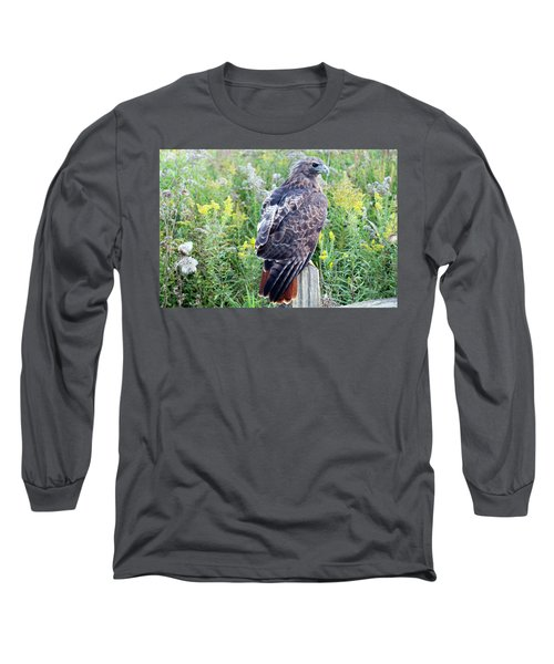 Red-tailed Hawk On Fence Post Long Sleeve T-Shirt