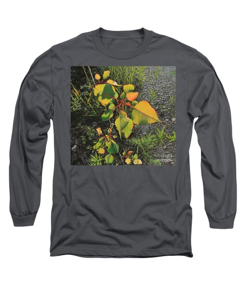 Roadside Attraction Long Sleeve T-Shirt