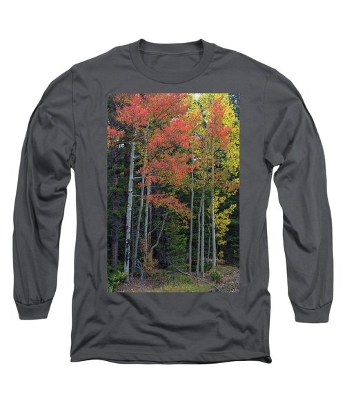 Long Sleeve T-Shirt featuring the photograph Rocky Mountain Forest Reds by James BO Insogna