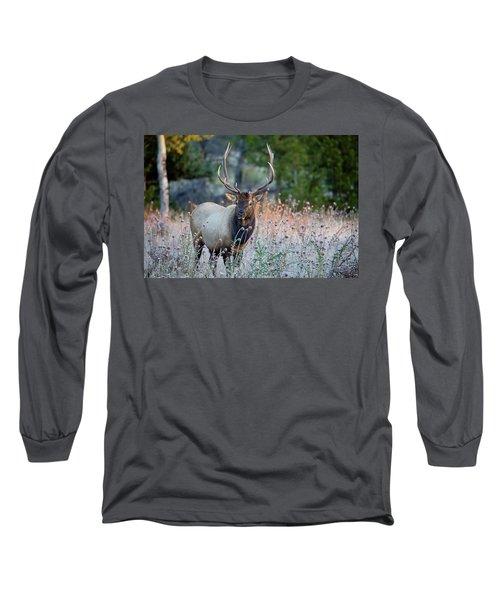 Rocky Mountain Wildlife Bull Elk Sunrise Long Sleeve T-Shirt