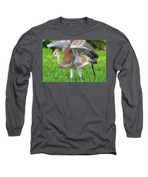 Sandy Crane Shows New Feathers Long Sleeve T-Shirt